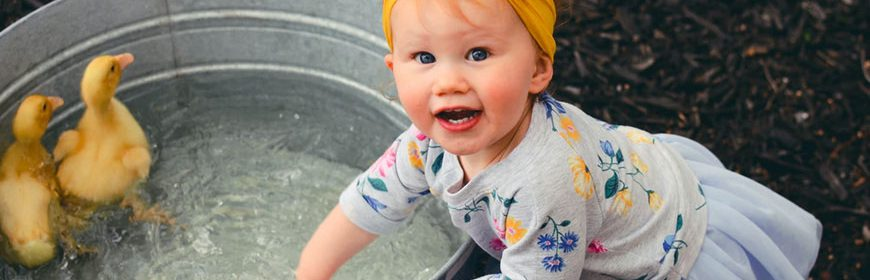Featured image The Science of Child Development 870x280 - The Science of Child Development