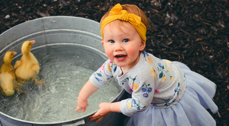 Featured image The Science of Child Development - The Science of Child Development